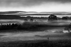 Ground Fog at Sunrise on Open Field, Amherst College Land, Amherst, Massachusetts. Photograph by Michael Zide